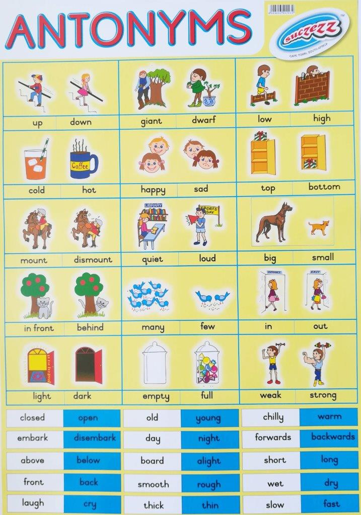 antonyms poster wall chart