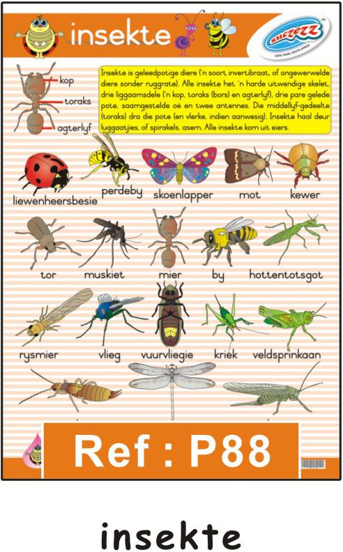 """Insekte"""" afrikaanse plakkaat / muurkaart"""