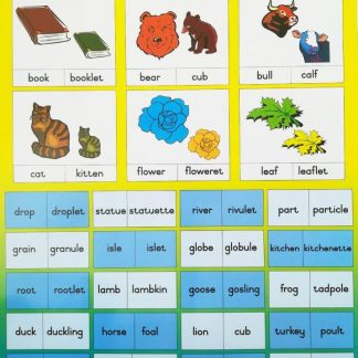 diminutives poster wall chart