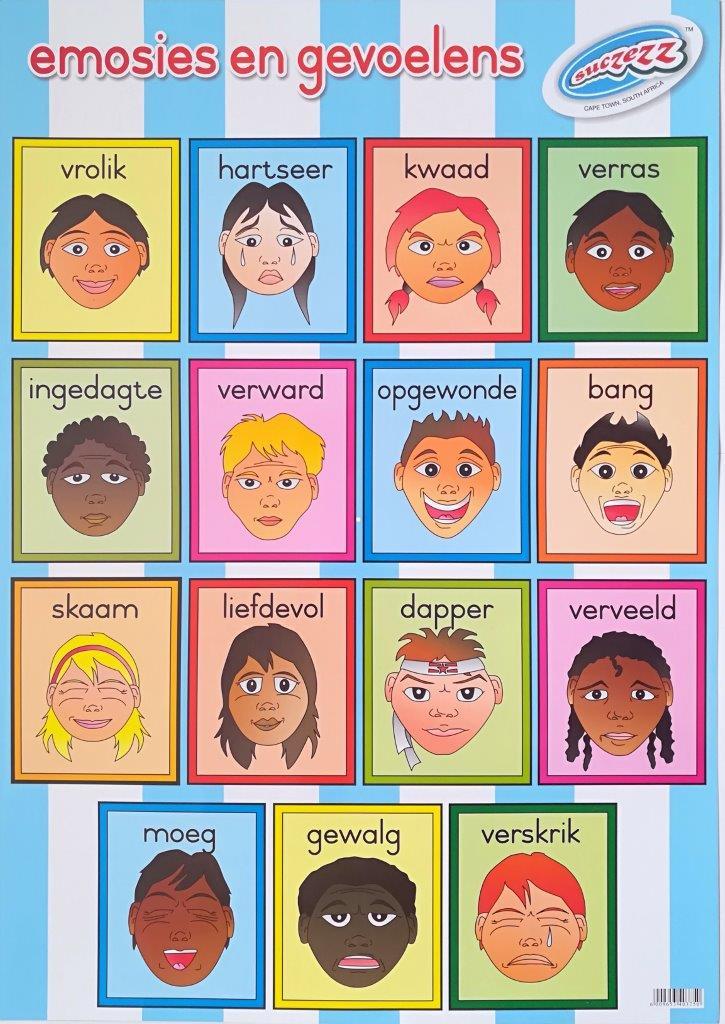 emosies en gevoelens plakkaat poster wall chart