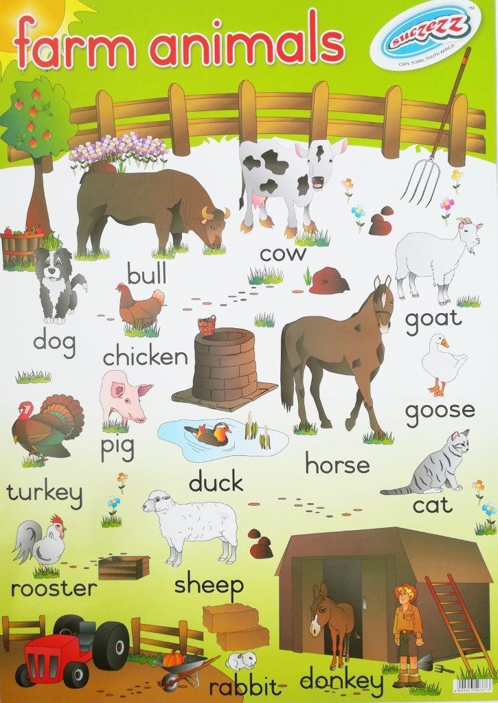 farm animals poster wall chart