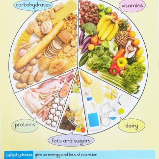 food wheel poster wall chart