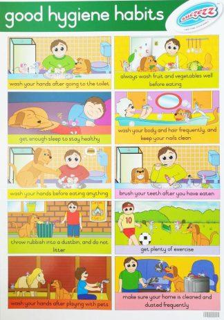 good hygiene habits poster wall chart
