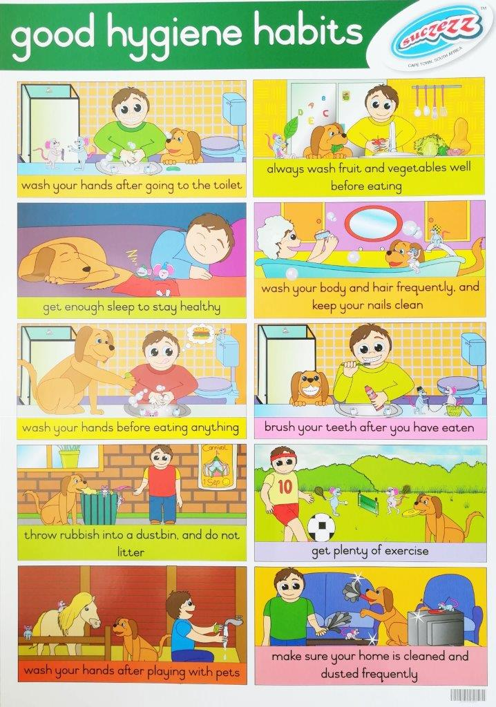good hygiene habits poster wall chart