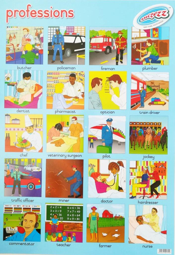 professions poster wall chart