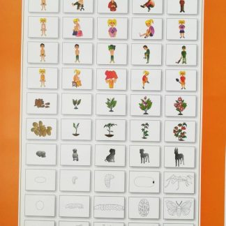 sequencing poster wall chart