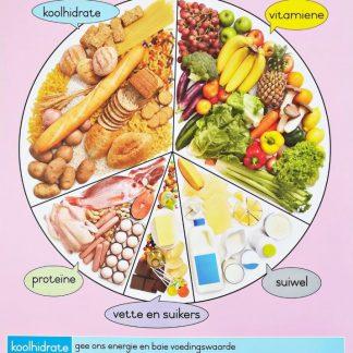 voedsel wiel