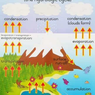 water cycle poster wall chart
