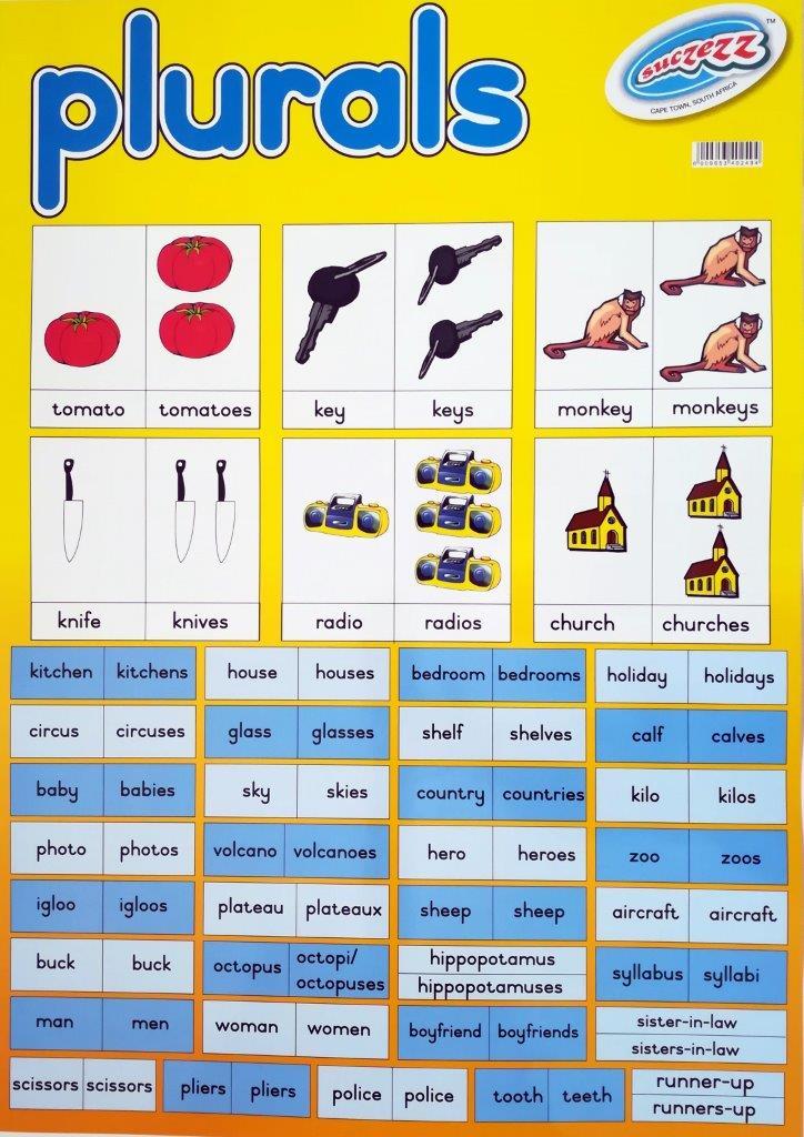 plurals poster wall chart