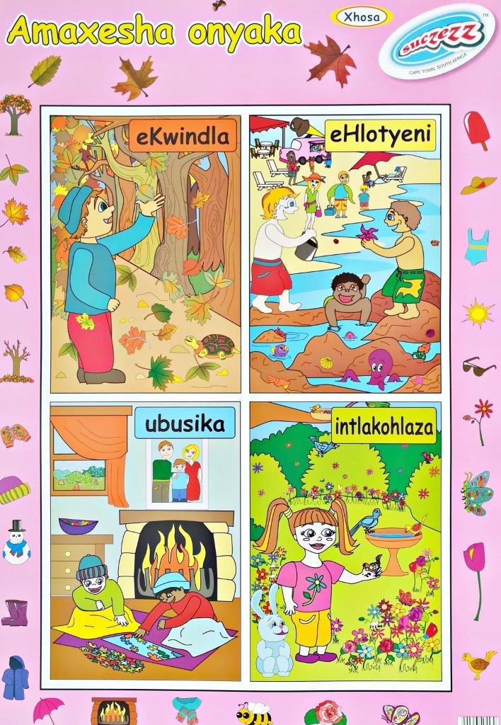 xhosa poster wall chart