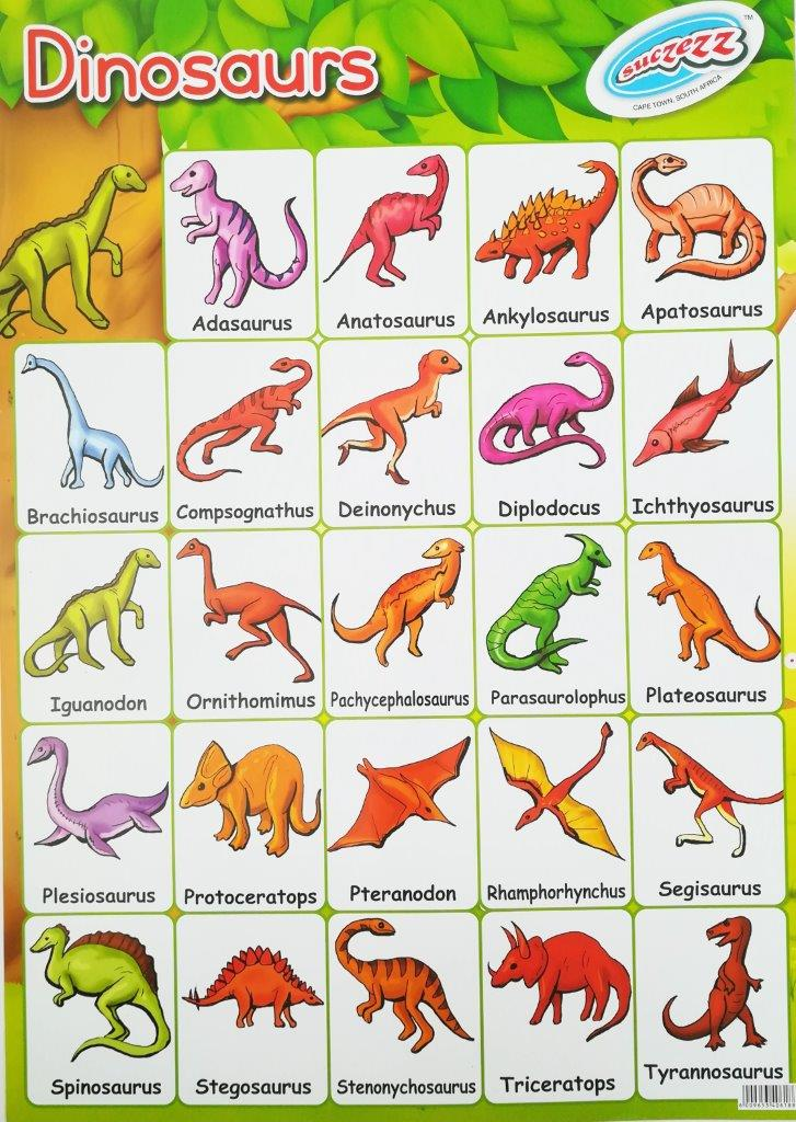 dinosaurs poster wall chart