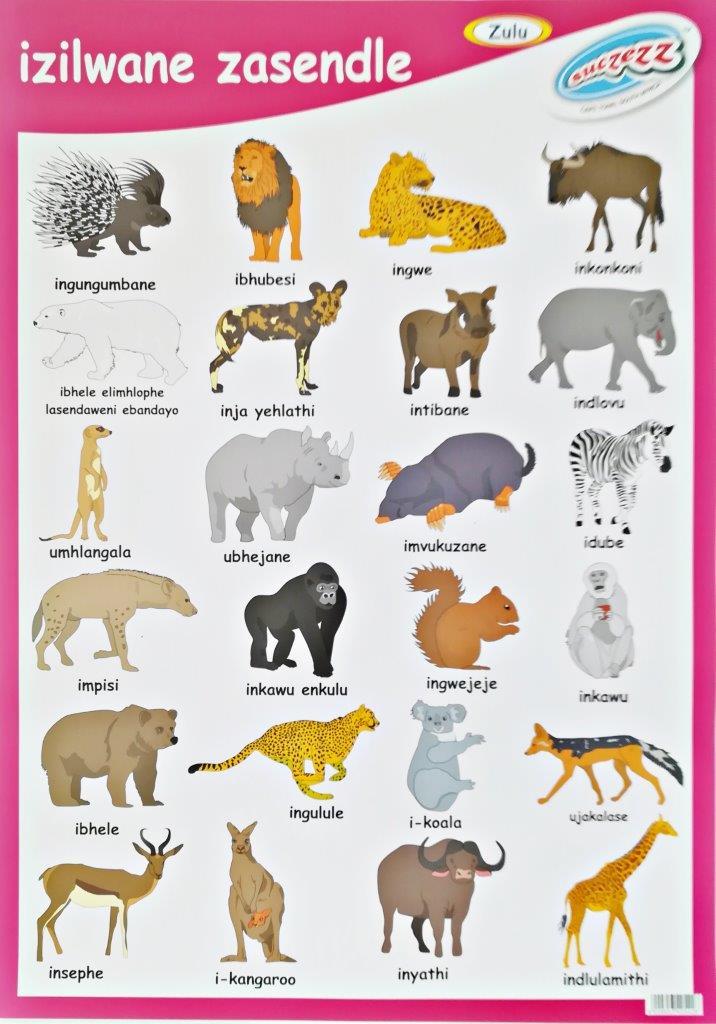 wild animals zulu poster