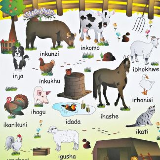 farm animals xhosa poster