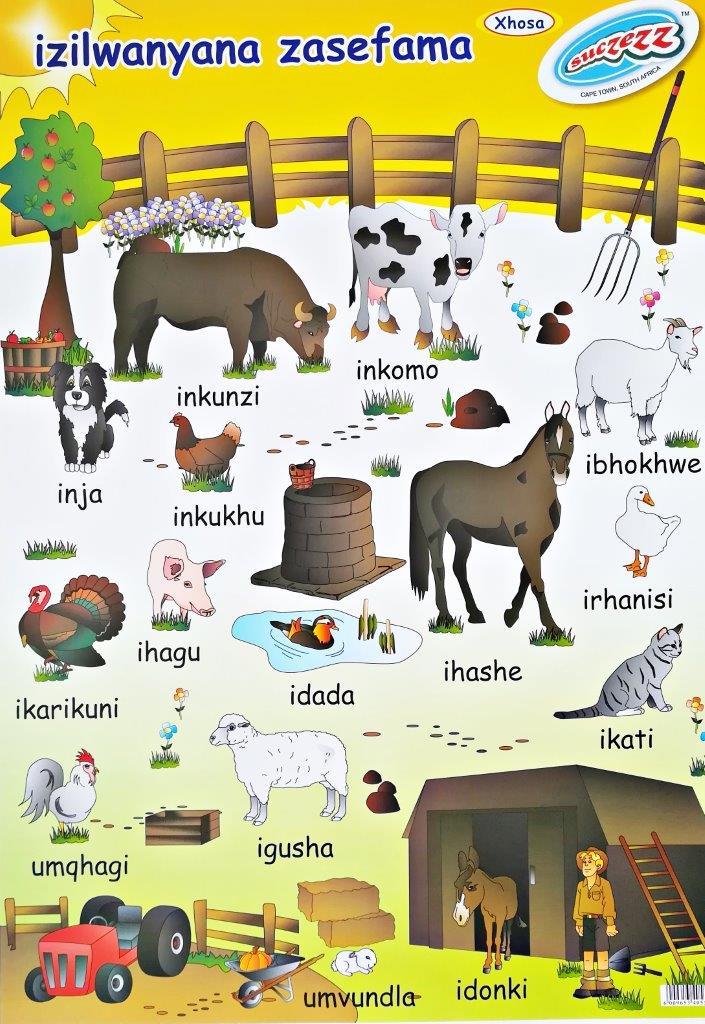 farm animals xhosa poster