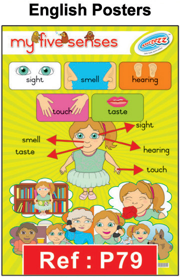 Educational Posters or Wall Charts